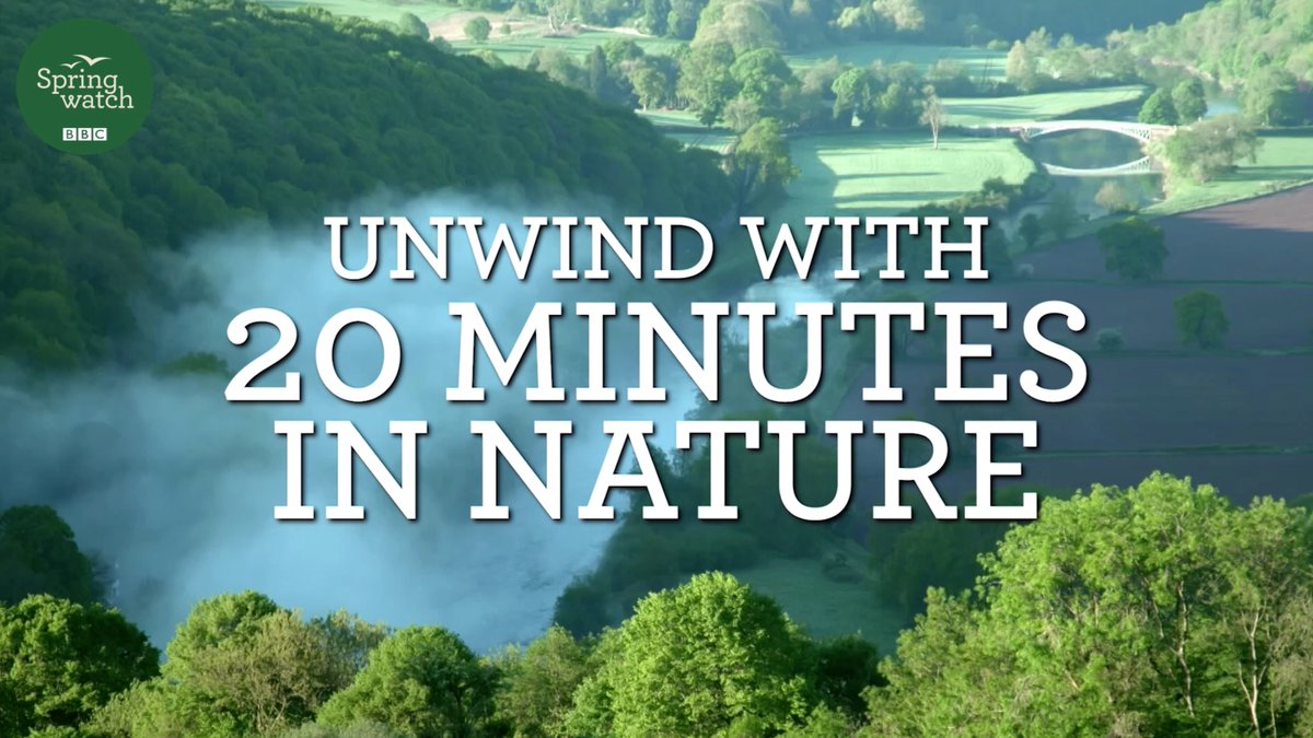 As they proved popular and many of you have been asking for it, we have compiled a compilation of all of the Springwatch Magic Moments from 2020. So sit back, relax, and unwind, with 20 minutes in nature over on our Facebook page: facebook.com/10082640667754… #Springwatch 💚