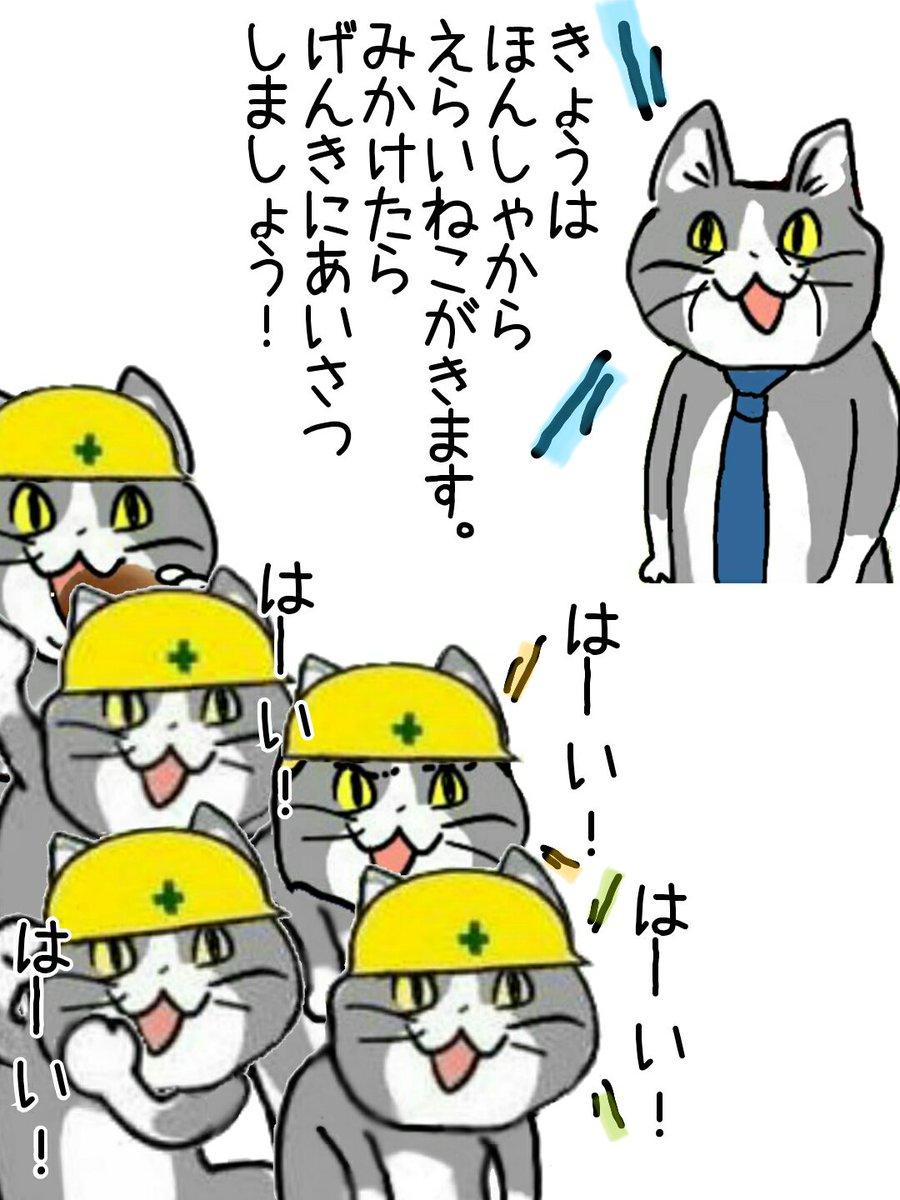 現場 猫 画像 現場猫はフリー 素材ではない?作者くまみねさん「現場に任せる」