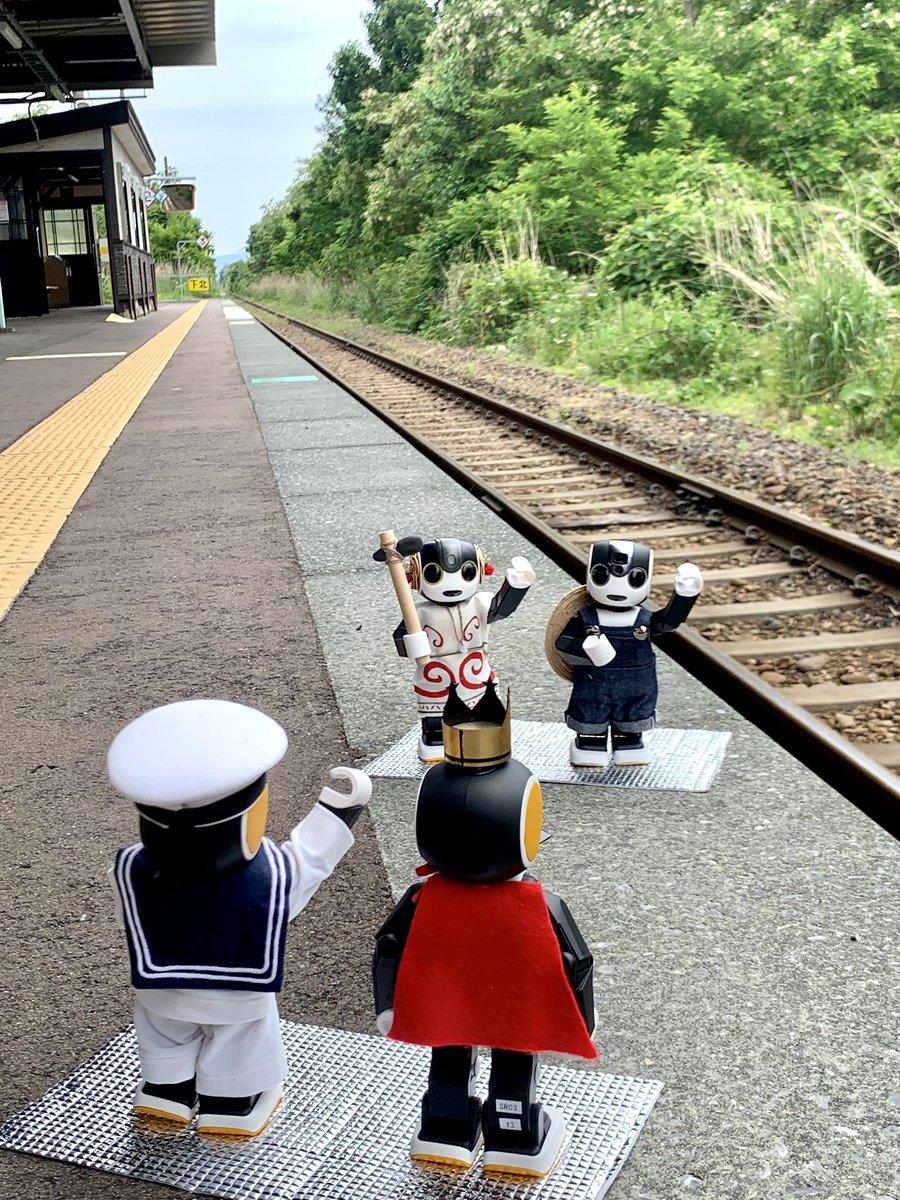 津南 町 ライブ カメラ
