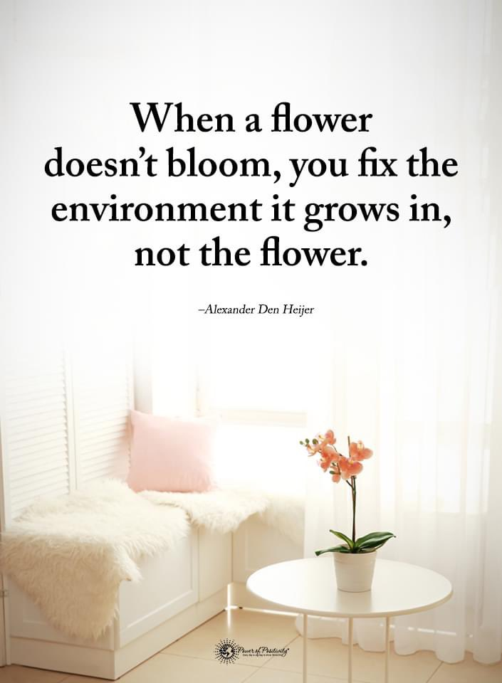 Think about what's not allowing your students to bloom...