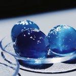 夜空の水信玄餅…幻想的な姿に癒される…