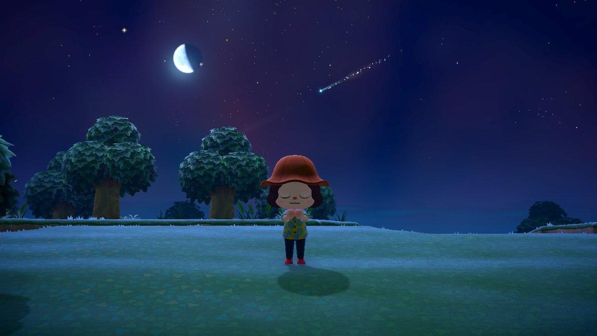 の 森 お祈り どうぶつ 流れ星