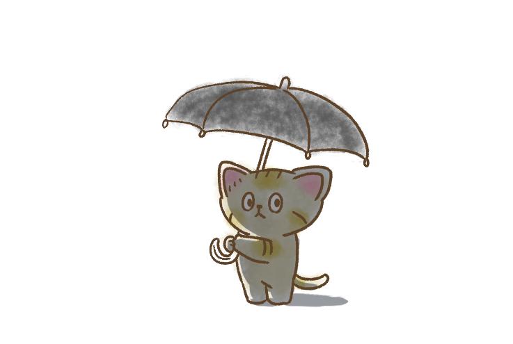 日傘持ったスナネコちゃん