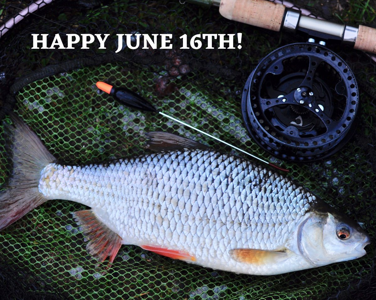 A great post from our friends at the Angling Trust Tight lines to everyone back on the rivers this week! With the dry spring now behind us, and rain having fallen in most areas, conditions look good to get a bend in your rod! Good luck. #coarsefishing #riverfishing #angling