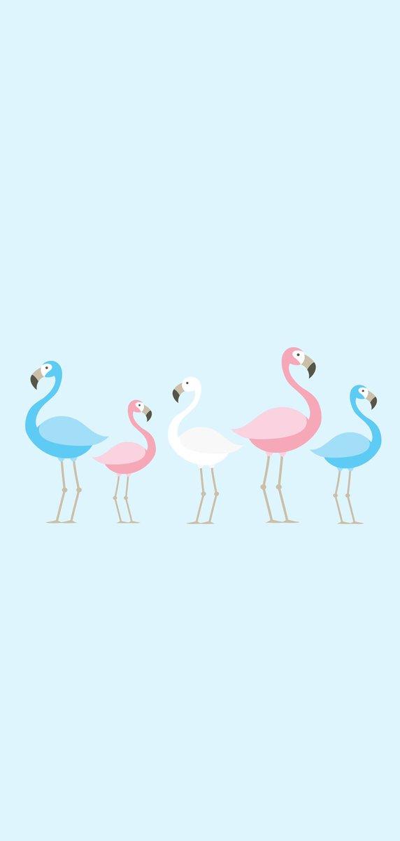 Gay Pride Pink Flamingo Lgbt Pride