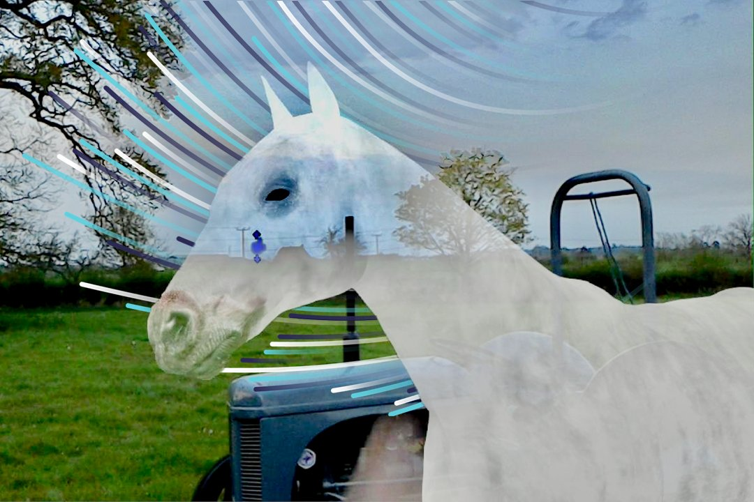 A computer generated horse in a real field.