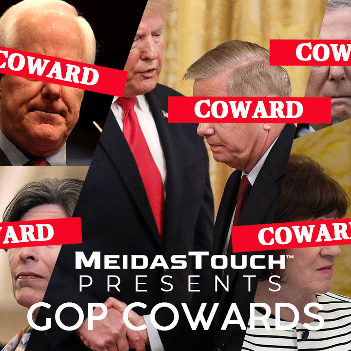 We will NEVER forget about the @GOP enablers who have let Trump destroy this country. We will vote all the #GOPCowards out!