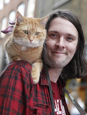 """R.I.P. Bob (2006-2020), English ginger cat.  He was known for being the companion of the activist, musician and author James Bowen (""""A Street Cat Named Bob"""", """"The World According to Bob"""", """"And Then Came Bob"""").  @streetcatbob https://t.co/urACt04uuS"""