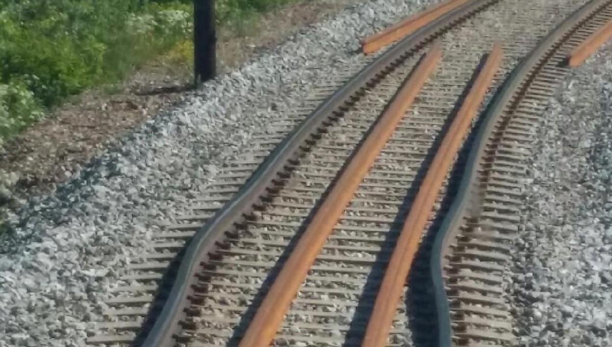 Solslyng påvirker togtrafikken på flere av våre banestrekninger. De siste dagene har det vært solslyng flere steder i landet, og med værmeldinger som varsler om sydentemperaturer i dagene som kommer, har vi økt beredskapen.   👉 https://t.co/8sMGMmW8VR https://t.co/6lH4BBfo9U