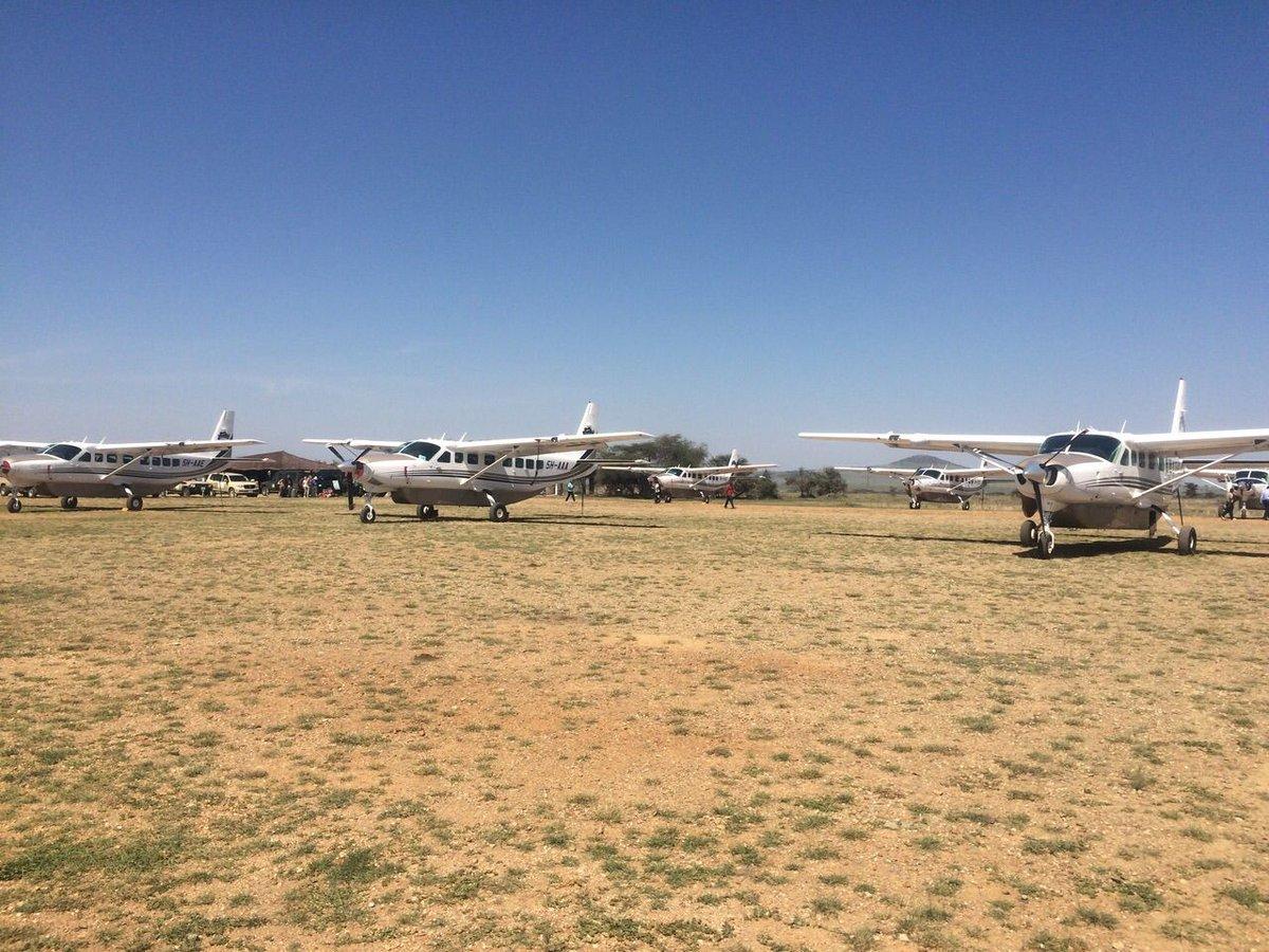 #Seronera Airstrip, #Serengeti  #FlyingSafaris #Tanzania #Wildlife #Africa https://t.co/iaYGmKg7NT