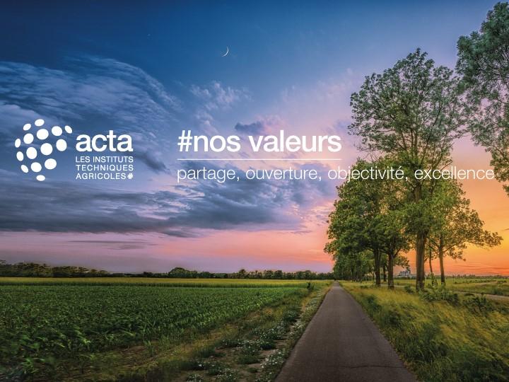 L'Acta développe les collaborations entre les différents instituts #ITA et renforce les partenariats avec tous les acteurs du développement  @ACTA_asso favorise le dialogue entre #ITA et la recherche académique @INRAE_France , @Cirad @irstea @Min_Agriculture @Anses_fr