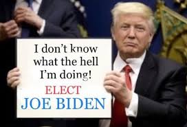MORON DON #TrumpDeathToll100K=119,941 #LockHimUp #COVIDIDIOT TOTAL FAILURE Mary Trump BOOK 'Too Much & Never Enough' How My Family Created the World's Most Dangerous Man. Hannity Suggests Bolton BOOK = False Hmm? How can it be False & Classified Leak at Same Time? @cspanwj Zone 6<br>http://pic.twitter.com/ct0z7DWuSt