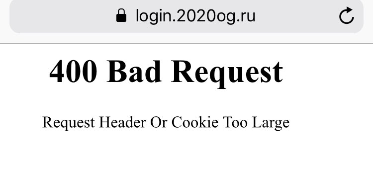 Beta test online voting system in Moscow. Well, as expected https://t.co/WAaPalmmIN
