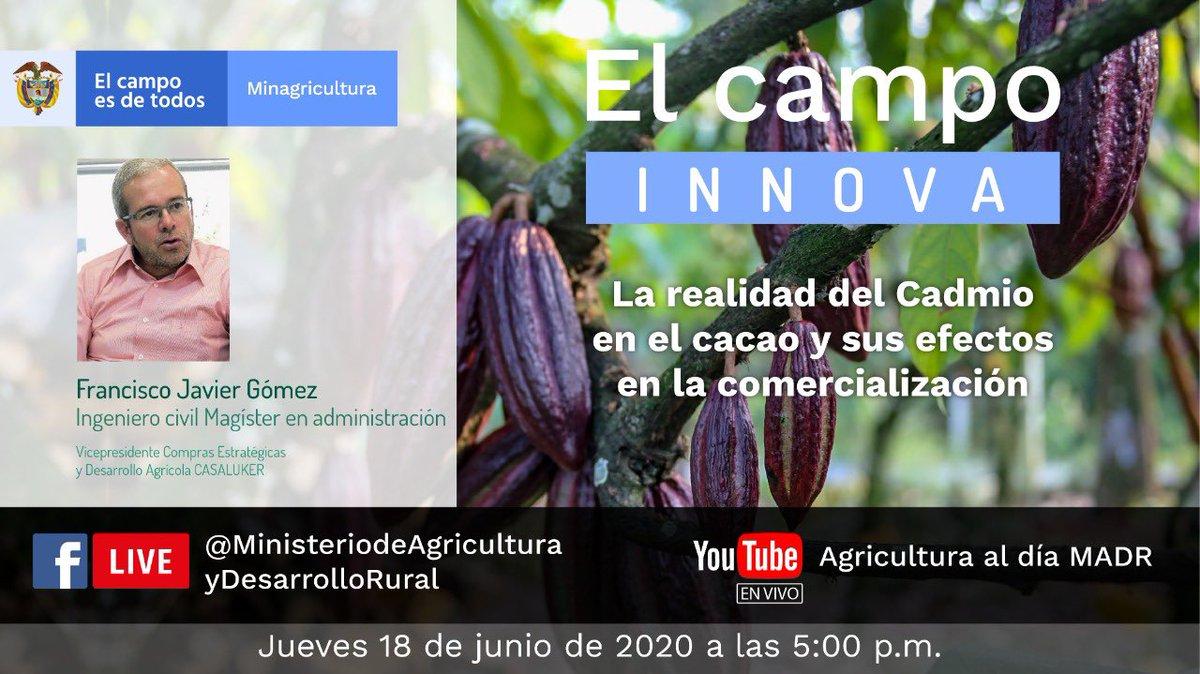 Hoy tenemos un nuevo #FBLive de #ElCampoInnova donde el Ingeniero Francisco Gómez nos hablará del cacao y los efectos del Cadmio en este fruto.  🔴Conéctate  a las 5:00 p.m. por nuestro Facebook / Canal de YouTube   ▶️ https://t.co/EuS5XoN2OH / https://t.co/oxYTKfB6cU https://t.co/GTdQLqfBX3