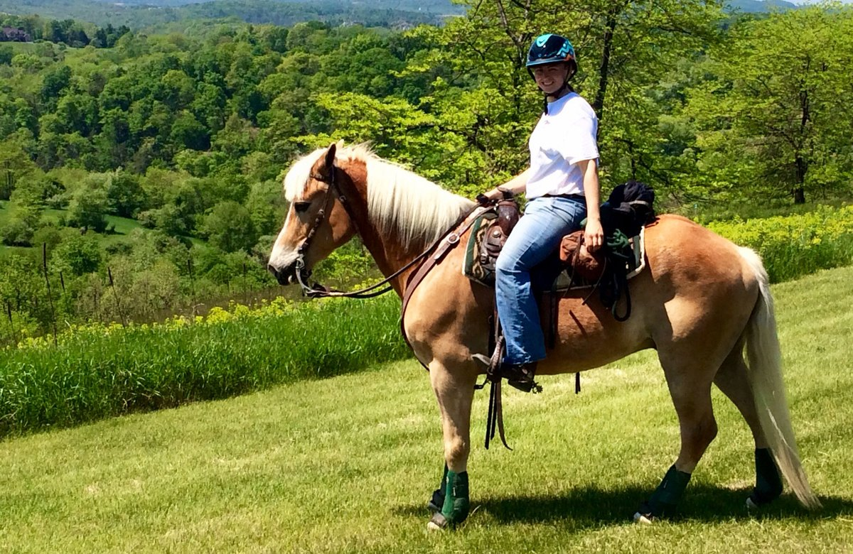 Summer is just TWO days away and its the perfect time to explore the great outdoors with your family! Try experiencing Lehigh Valley Trail Rides, Pocono Biking, @SkirmishUSA and more: bit.ly/2KK7rsS