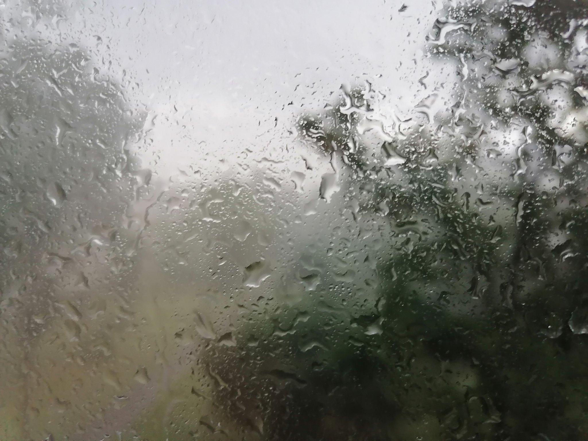 Запевало дождь нарколог хэлп лечение алкоголизма в москве