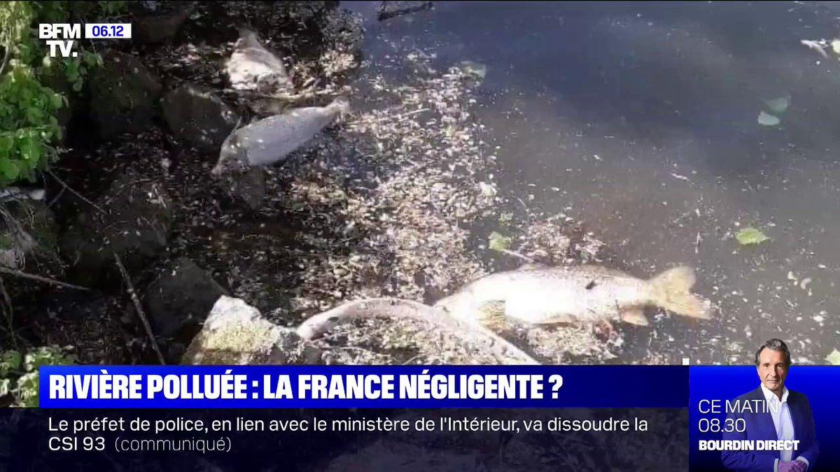 Pollution de lEscaut: la France a-t-elle été négligente envers la Belgique ?