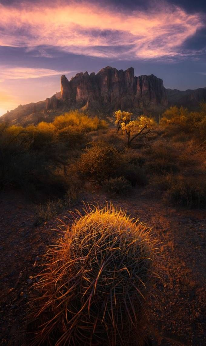 "Community Spotlight: 'Desert Sunrise' by viewbug PRO Saptashaw ""Among all the different cacti I came across on this trip, the barrel cactus lent itself as a far better foreground than the others due to its shape."" https://t.co/qkk13jVC0f https://t.co/qU8XWjr0pM"