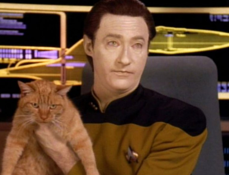 Data's like, 'I know a Spot' and then he introduces you to this cutie