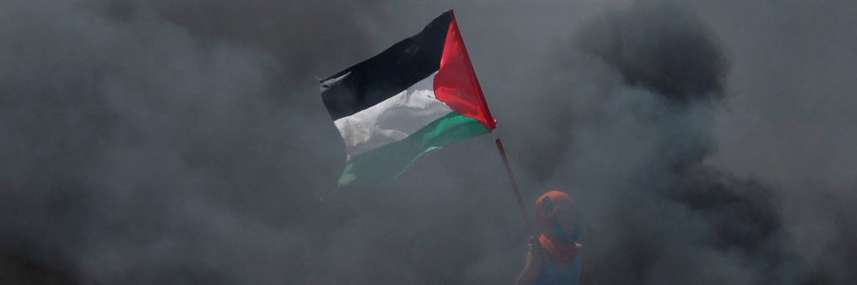 Free Palestine 🇵🇸
