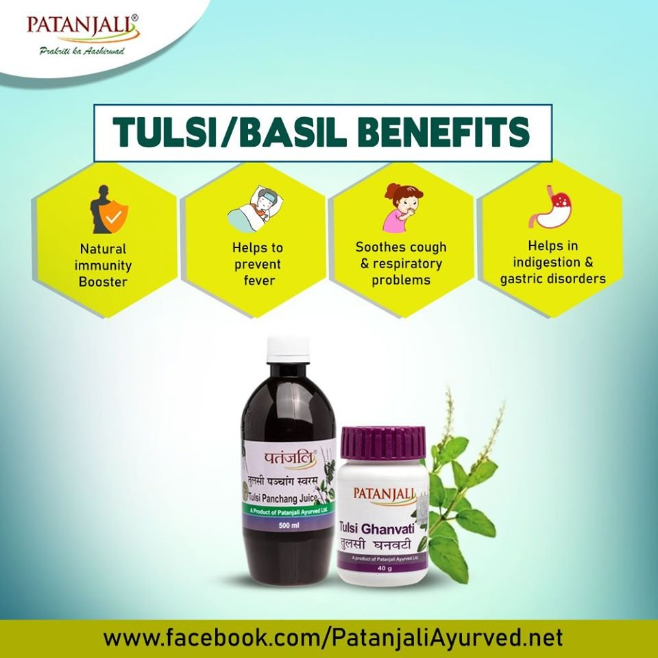 Tulsi is used to cure various diseases and their symptoms since ancient times. ✅Natural Immunity Booster ✅Helps to prevent fever ✅Soothes cough & respiratory problems ✅Helps in indigestion & gastric disorders #कोरोनिलविजय #पतंजलिविजय
