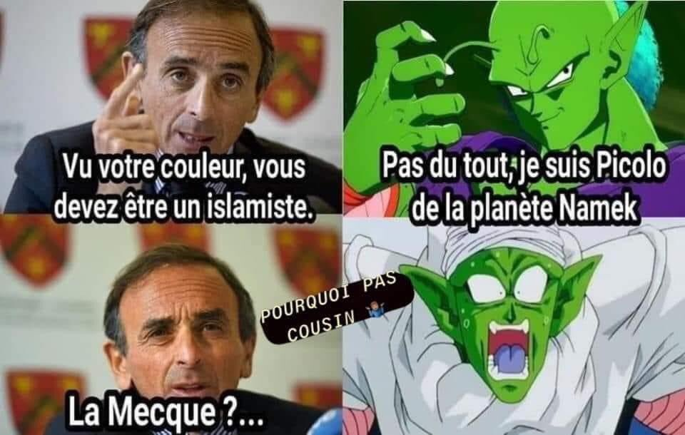 What else Eric  #ZemmourFacts #Zemmour #DBZ @DBZcom  #EricZemmour<br>http://pic.twitter.com/quyMjRvftC