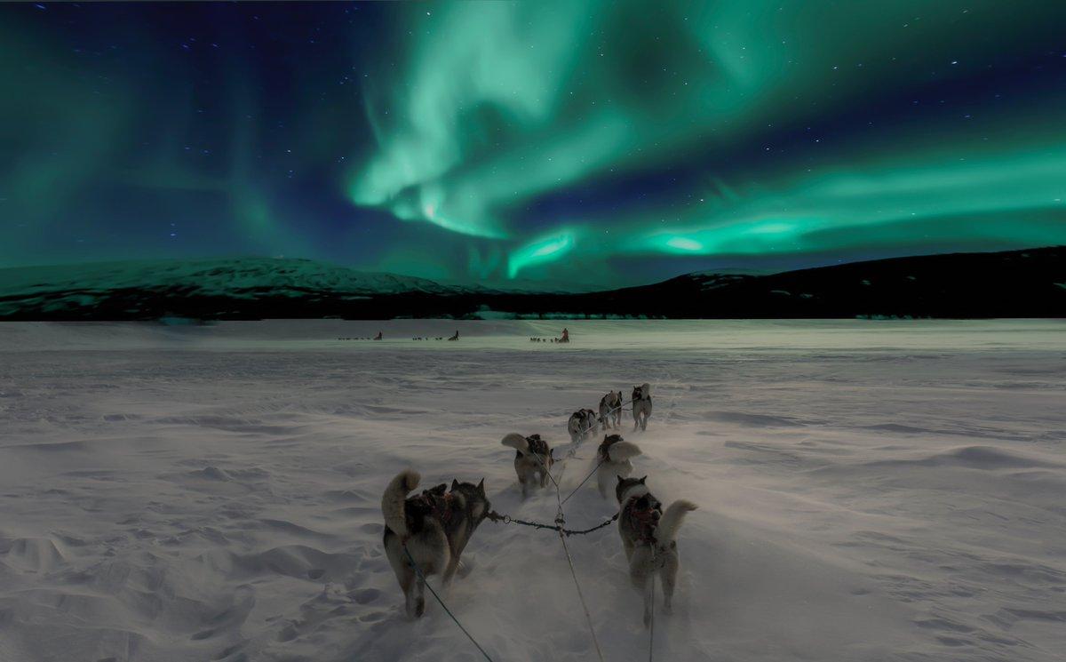 El gran viaje en familia a la Laponia Finlandesa más auténtica. Consulta las condiciones especiales NUBA. https://t.co/TYVzmBJp1a https://t.co/5dtKuMU1JF