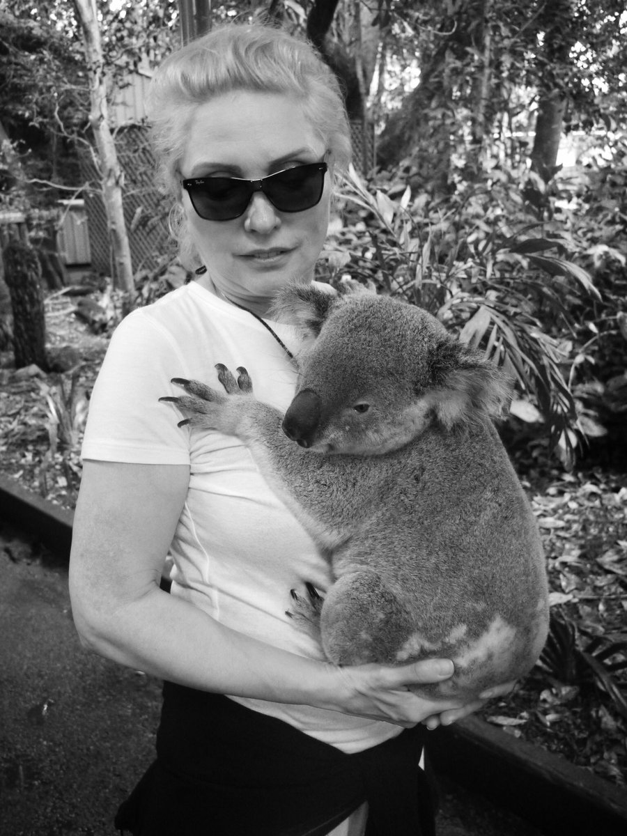 Happy Birthday Debbie (Protect the koalas too) Pic @chrissteinplays https://t.co/L85KK164cl