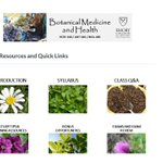 "Attn: #Emory #undergrads! I'm offering the featured course in ""Botanical Medicine & Health"" fully online in Fall 2020 🧪🌿💊 Redesigned w/ engaging videos, readings & in-class (zoom) group activities😊  Counts towards 3 majors: HLTH440/BIOL442/ANT440!  @EmoryCSHH @emorycollege"