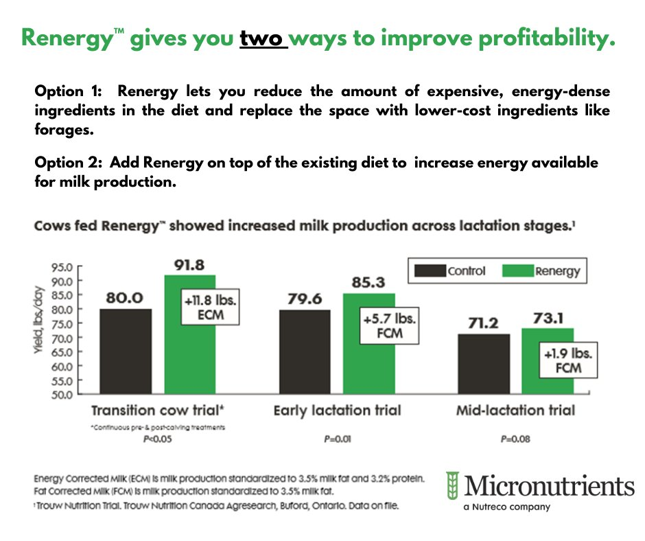 Renergy™ can increase profitability in your operation by assisting cows in producing more propionate to fuel energy.  Learn about your options, and how to get Renergy today, email us here > marketing.micronutrients@micro.net    #renergy #feed #feeds #agriculture #dairyindustrypic.twitter.com/WdBSmlM7nJ