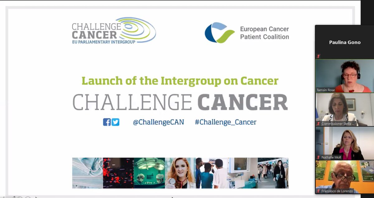 SNE welcomes the launch of the EP #Challenge_Cancer Intergroup! Nutritional interventions should be an integral part of cancer care @ChallengeCAN