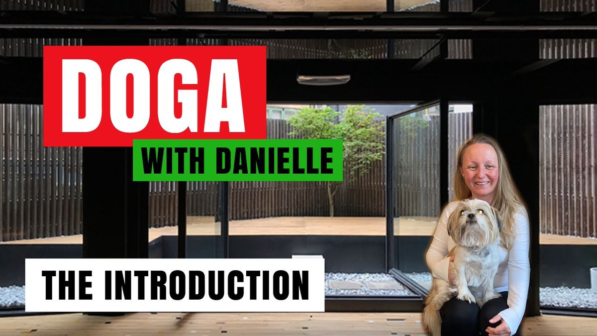 Doga with Danielle - The Introduction • #DogaWithDanielle   #ChildOfGod #ChildOfGodTeam #ChildOfGodMovement #Doga #Yoga #Movement #Health #Fitness #Malshi #Shitsu #Maltese #DogLover #MentalHealth #Spirituality #Recovery #Introduction #Welcome #Connection  https://t.co/sA74YU4YUW https://t.co/UXQkn6lLSH