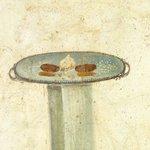 Image for the Tweet beginning: Popular cooking ingredients in ancient