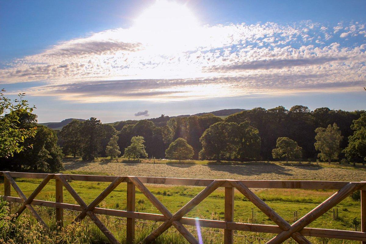 Blinding #photography #photooftheday #lovescotland #visitscotland #beautiful #canon #photographyaddicts #nature #naturephotography #roamtheplanet #earth #ukshots #scotlandshots #outdoors #landscape #landscapephotography #photo #love #photographer #picoftheday #art #opotypic.twitter.com/dflNpryjd1