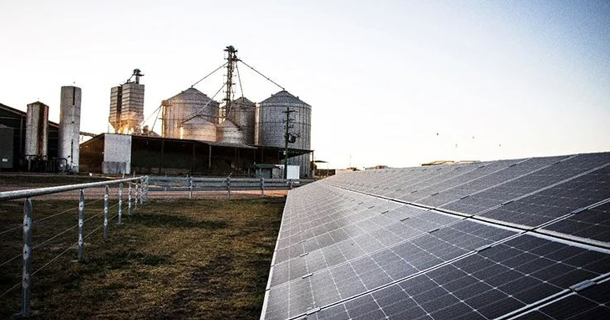 Finding solutions to reduce energy usage and the environmental footprint of Australian feedlots is the focus of a research project underway at Teys Australia's Condamine Feedlot 👉 https://t.co/wNMtneiI1v @TeysAustralia #AusAg #AgChatOz https://t.co/pAAaTazhTJ