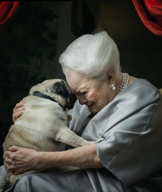 Thanks for following my #InThisOurLife livetweet! Today, Olivia de Havilland lives a happy life in Paris with a daughter who visits often, knowing how she is loved by her family, friends, and fans. She celebrates her 104th birthday today at home w her pug named Oscar. #TCMParty<br>http://pic.twitter.com/nD424TUUS5