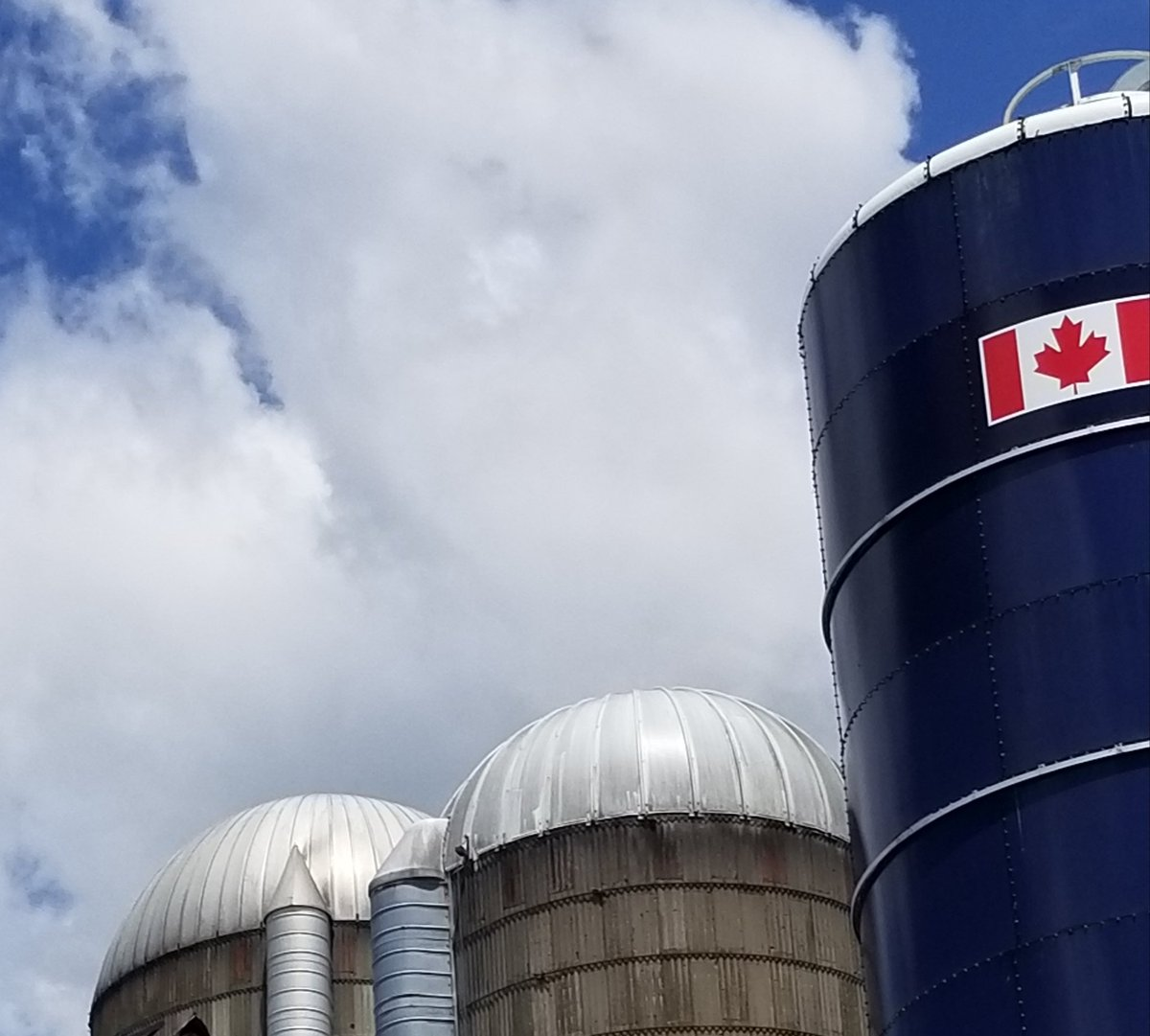 Proudly Canadian. Ag Proud. Happy Canada Day folks! #agintheeast #AGcommunity https://t.co/PxFQXapqOs