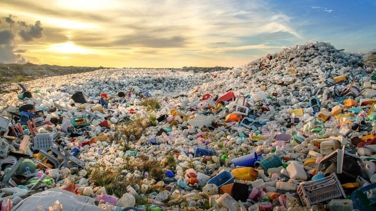 Solo los humanos producimos desechos que La Tierra no es capaz de digerir O cambiamos de conducta o arrasaremos con todo vestigio de vida en el planeta ... https://t.co/boqBNT1igI