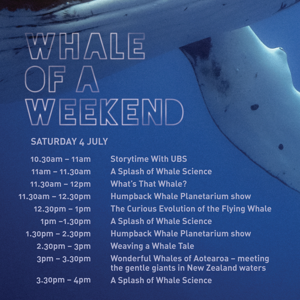 Come along this Saturday to Whale of a Weekend. There will be expert talks by scientists, illustrators sharing their process, a children's storyteller reading whale tales, a talk by an award-winning nature filmmaker, and hands-on science demos for all members of the whanau. https://t.co/8mEs2YKQUl