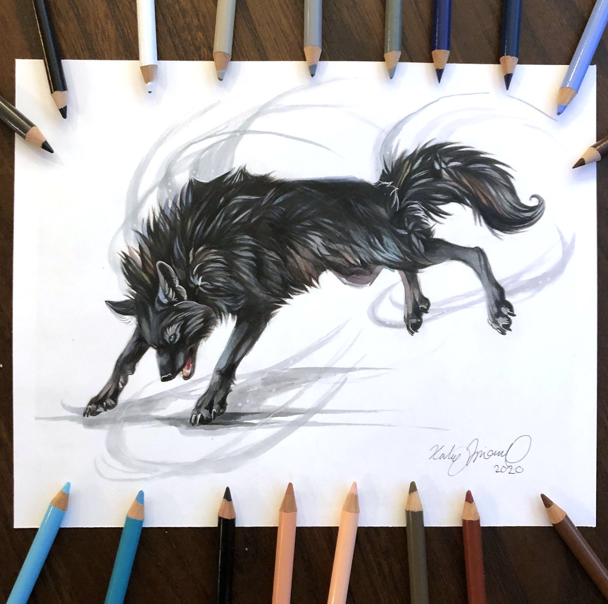 Day 181: Black Wolf  This is the second of four Your Character Here charity commissions for the Athens Freedom Fund. I certainly had a lot of fun with the detail in the black fur <3  . . . #wolf #illustration #coloredpencil #fabercastell #artofdrawing #bristolboardpic.twitter.com/pRBZiNkP9s