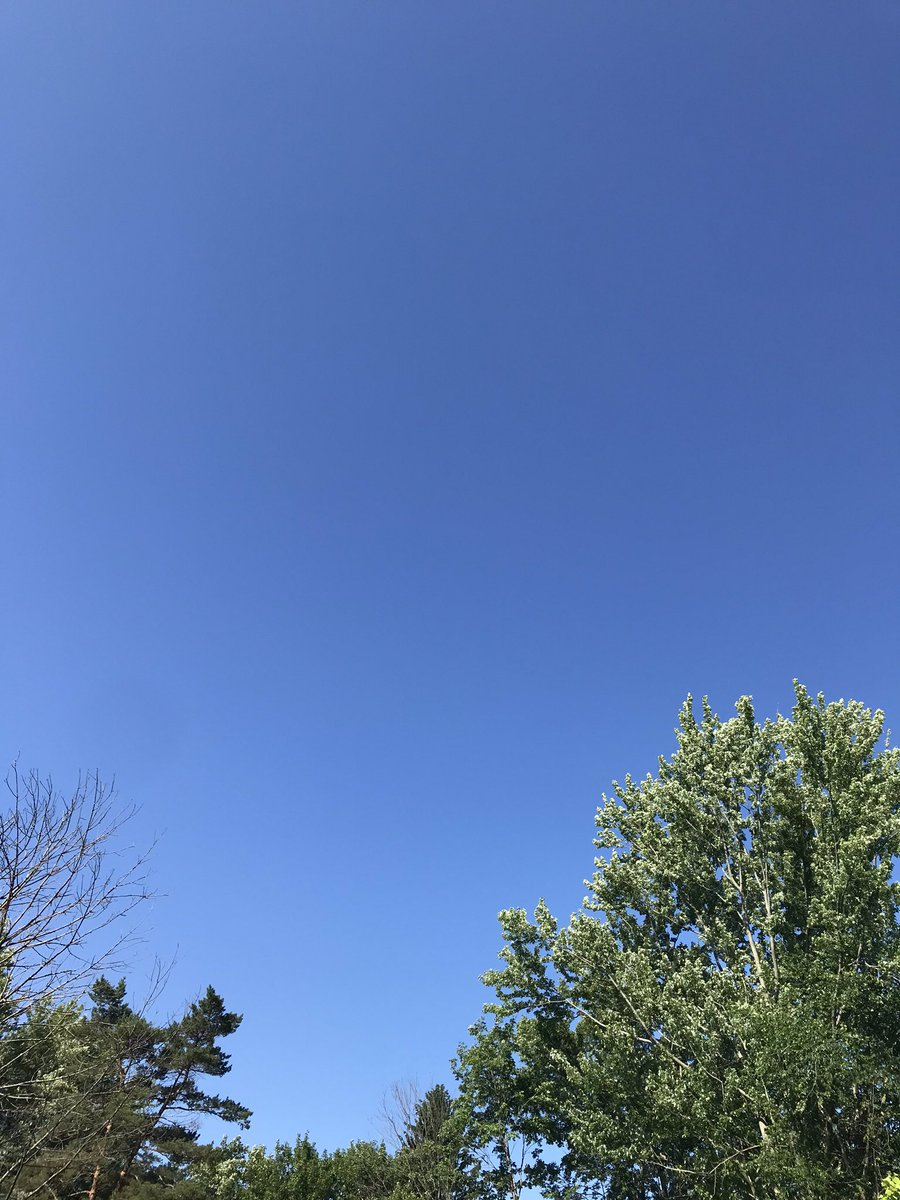 @allaboutirma So true. I was mesmerized by the sky yesterday. Not a cloud in sight for hours, felt like I was looking into the ocean. Then puffy white clouds rolled in. Was a perfect summer day! 🌞☁️ Grateful and cheeky all day long. 🙏🏼😊💖 Have a great Thursday and stay safe and cool. 🦋🌸