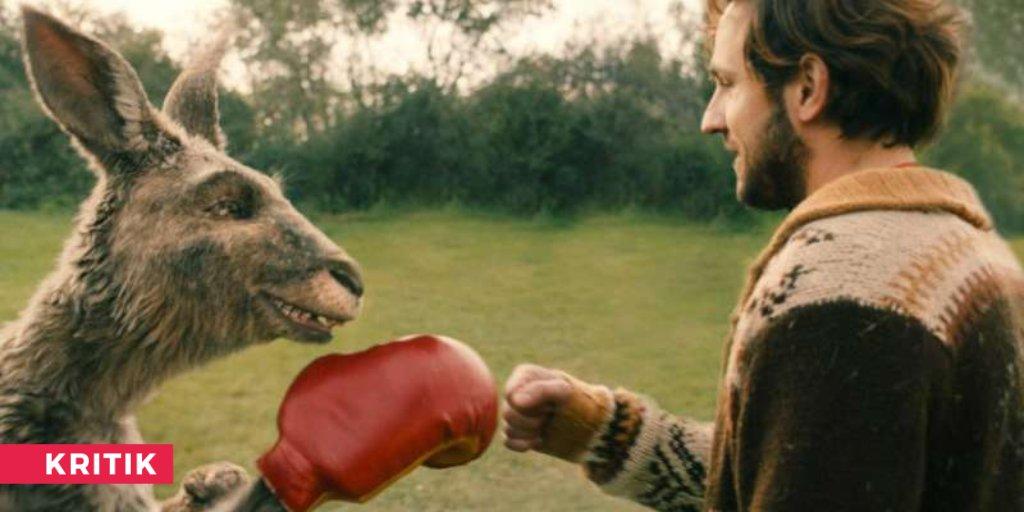 In unserer Kommentarspalte lesen wir gerade die Vermutung, das Känguru sei für Corona & Lockdown verantwortlich, damit... na, lest selbst ! Jetzt wieder im Kino! https://buff.ly/3ii7EmEpic.twitter.com/ifOcmvmIIM  by kino-zeit