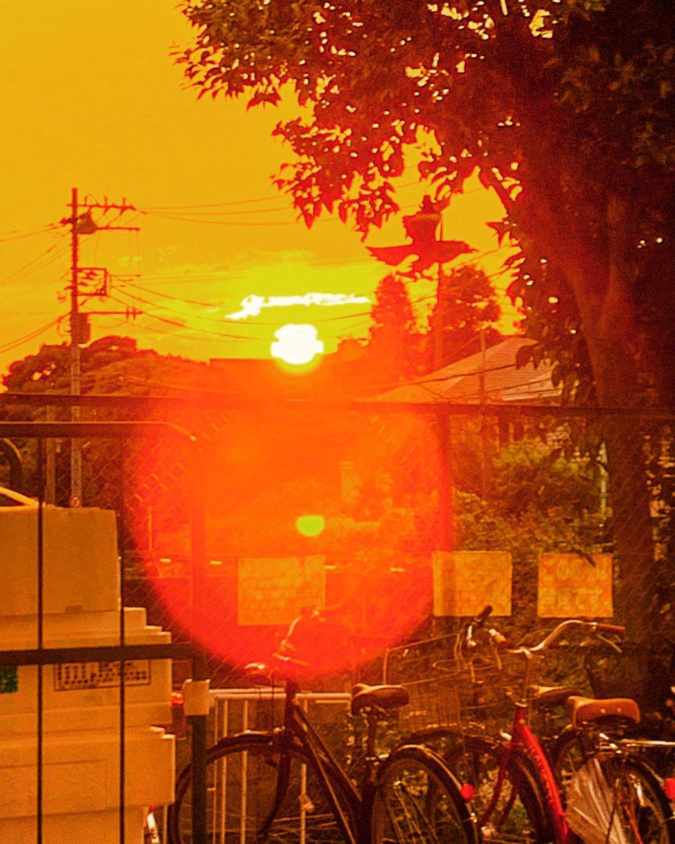 五百年後も赤い夕陽の憎いヤツは燃えているか  舞鶴太郎が見ている #シベリア の地平線に沈むそれをお届けできず残念です  #山田芳裕 #望郷太郎 #夕陽  #sunset #モーニング #漫画 #uk