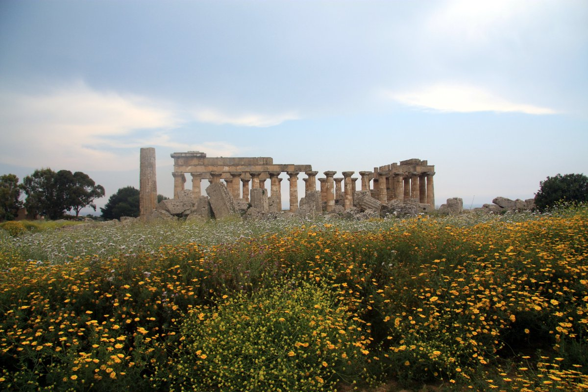 Temple at Selinunte, Sicily. #Sicily #Sicilia #Italy #Italia #ancient #Greek #temple #landscape #landscapephotography #architecture #architecturephotography #travel #travelphotography #tourism #photo #photos #photography #photooftheday #picoftheday #thursdayvibespic.twitter.com/rNCyAdJVQd