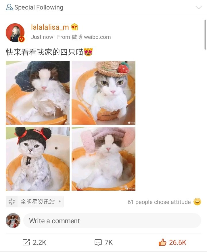 Lisa's Weibo update... I'm crying.  Btw, don't forget to like, share, and repost with caption!   https:// m.weibo.cn/7330454276/452 2300432613484  …   #LISA  #리사  @BLACKPINK<br>http://pic.twitter.com/7xOXXOZbTy