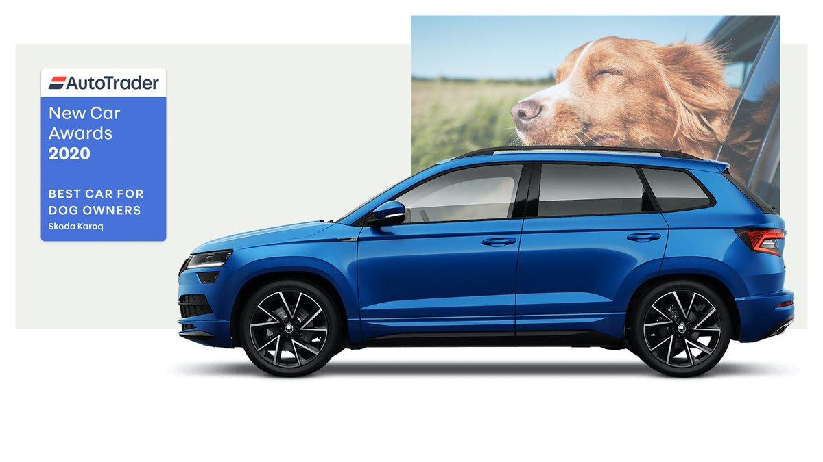 Best car for dog owners. And the winner is… Skoda Karoq @SKODAUK #NewCarAwards2020