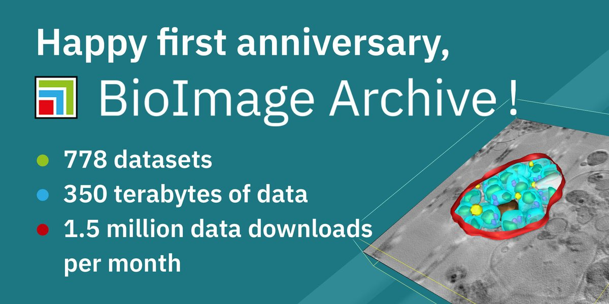 Today marks one year since the launch of the BioImage Archive, our dedicated data resource for biological images 🥳 Huge thanks to our @EMDB_EMPIAR, BioStudies and technical services teams for all their hard work behind the scenes! #bioimaging https://t.co/mFV6Nd9m3J https://t.co/E2B3GtVMVZ