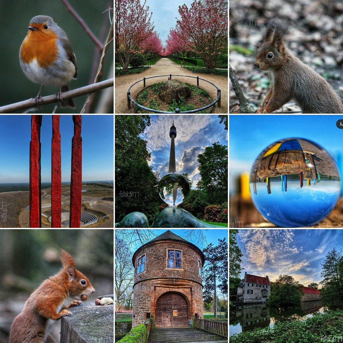 Gefallen euch die Fotos?  Mehr davon gibt's auf #Instagram unter fotokat77! 😉😊