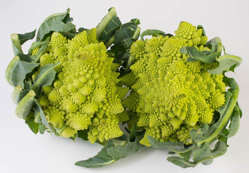 Romanesco Cauliflower is an Italian variety, musty-nutty flavor and firmer texture than regular cauliflower, https://t.co/LqHSJHKXTt #IngredientOfTheDay #foodoftheday #foodporn #foodie #cheflife #todayfood #foodphoto #foodpics #foodpicture https://t.co/ITLx4Zsrk9