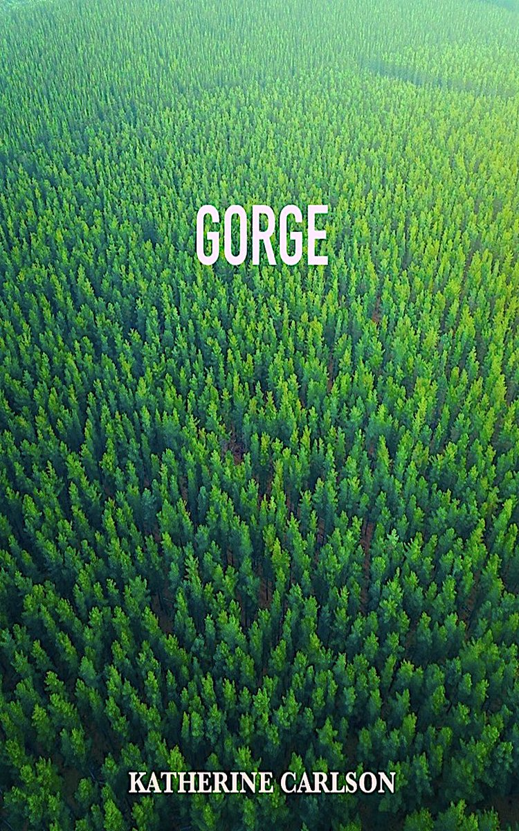 """Discover: GORGE: a novel of #suspense by @KattheStoryGirl   Only #99cents > https://t.co/9tIhuqddYU  """"A litany of confessions.  A maze of tribulations.  A test of endurance.""""  #Kindle #KindleUnlimited #horrorcomedy #travel #adventure https://t.co/5nub2H5fHc"""
